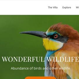 Arijaana Villa homepage